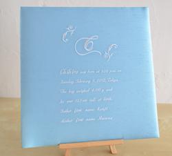 ベビーアルバム Embroidery BLUE (エンブロイダリー・ブルー)
